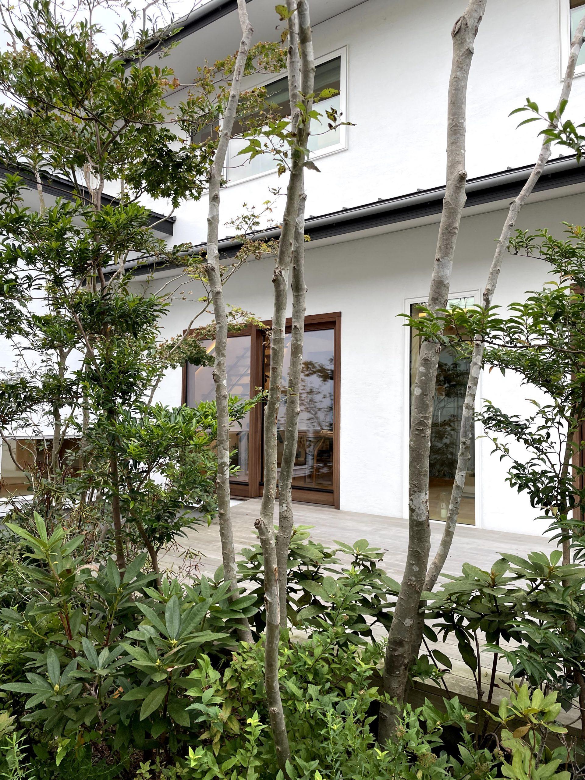 日建ホームモデルハウスの庭